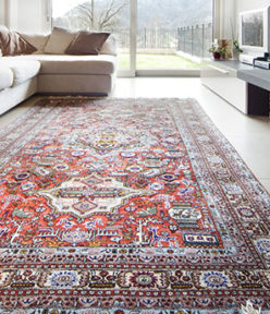 Putting A Lens On Area Oriental Rugs